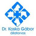 Dr. Koska Gábor
